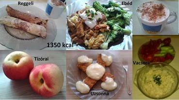 legjobb diéta 40 felett 90 napos szétválasztó diéta