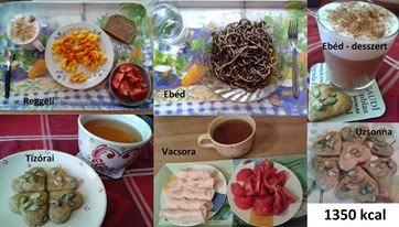 1350-kalorias-etkezesi-minta4